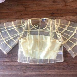 pastel yellow Mesh puff sleeve top w/under shirt
